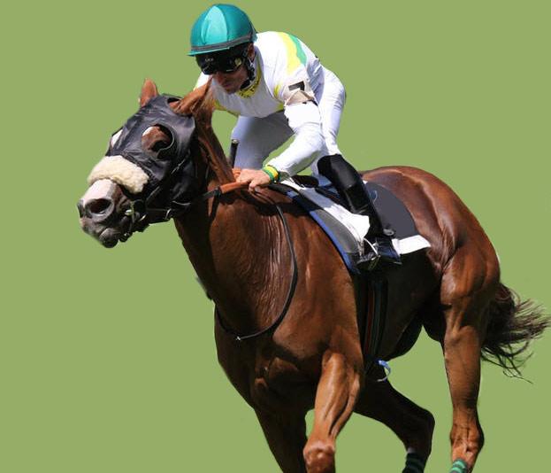 horse racing bonus